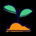 seo-granada-nomada-brotes-metodologia